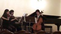 老齐和他的朋友们之 勃拉姆斯钢琴三重奏 Brahms Trios Op.8