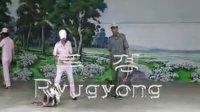 朝鲜平壤动物园里的驯兽表演4