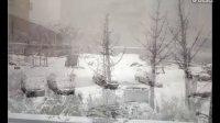 2011工地雪景