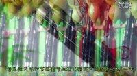 天木平角竹节全黑檀葫芦丝图片展示