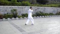 杨氏太极拳小架(正式版52式)