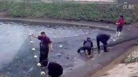 [拍客]鱼苗铺捞全过程