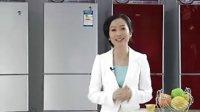 海尔冰箱2011家电下乡产品推介BCD-206STX