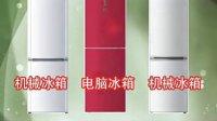 海尔冰箱2011家电下乡产品推介BCD-210DCX