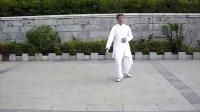 白鹤亮翅-偻膝拗步-手挥琵琶的正面