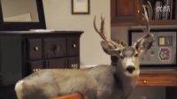 平安夜的鹿