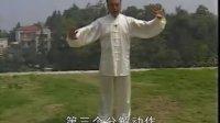 【张志俊·张鹏】新架一路讲解(3)