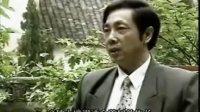 中国系列茶文化之君山银针