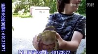 [奇闻趣事]这只青蛙叫得同婴儿声音一样 感兴趣的朋友可以看下!