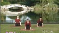 初级瑜伽教程完整版