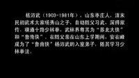"""""""武林儒生""""安在峰  今日视点"""