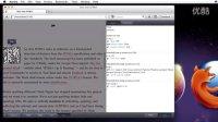 Firefox 10中的网页开发工具