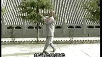 少林小罗汉拳《释德扬》.