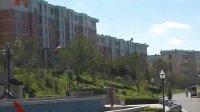全国政协常委视察团到我省视察社区建设 120710 黑龙江新闻联播