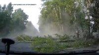 交通事故记录(3)