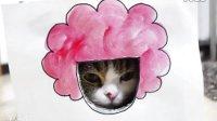 """【嘿姆仔】最潮发型的""""潮猫"""""""