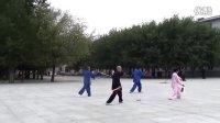 南岔广场四人演练 陈式56式太极剑
