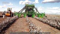 John Deere Cotton Picke约翰迪尔采棉机超宽行距收获作业
