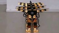机器人表演千手观音--博乐机器人表演[www.boole-tech.com]