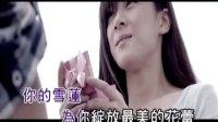 艾歌-做你的雪莲MV