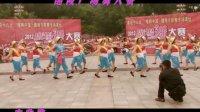 醴陵广场舞 丰收歌 湖电代表队