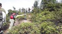 侬队会员攀登蒙山最高峰——倮倮顶