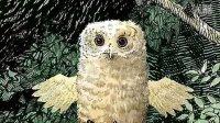 中英文绘本专区 《Owl baby》