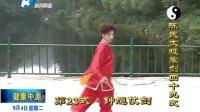徐勤兰陈氏太极单剑电视教学2012年9月4日