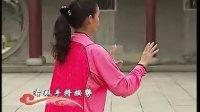 段位新教程杨式太极拳1-3段单练套路