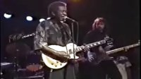 Luther Allison -Zoo Bar Blues -  Lincoln Nebraska