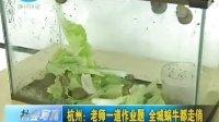 杭州:老师一道作业题 全城蜗牛都走俏