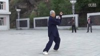 南岔广场高介河演练48式太极拳DVD剪