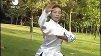 杨氏太极拳85式【分解教学】_标清