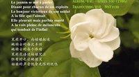 法语版 « 茉莉花 »(« 好一朵美丽的茉莉花 »)