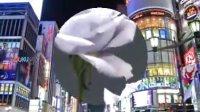 全球首批蓝玫瑰亮相日本国际花卉博览会