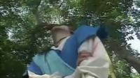 金蛇郎君-国语字幕 郑伊健 04