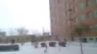 纪录片狗狗与雪