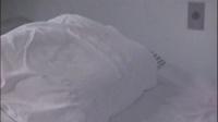 宇宙英雄奥特曼国语修复重制版第28集人体标本5,6