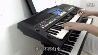 纯真年代 电子琴演奏 - 符正校