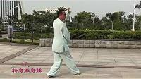 杨氏太极拳115式大架
