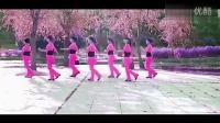 2014最新最流行最经典广场舞健身操视频教程最炫民族风动作分解