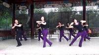 罗源凤山公园舞蹈角晨练舞蹈紫竹调