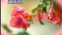 百鸟朝凤-喜庆唢呐经典 标清