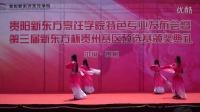 2014年特色专业发布会-舞蹈《惊鸿舞》