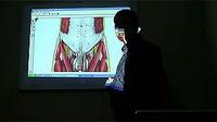 0001.优酷网-筋节点疗法治疗性功能障碍讲课视频