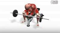 小臂锻炼、动画带显示肌肉 强力推荐_标清