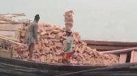 YOUTUBE每天牛人 开挂印度人运送砖头