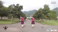 紫蝶踏歌广场舞《偶然的相遇》正反演示、教学