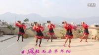 信家艺居广场舞《舂江月夜》参加柔柔老师的联盟活动