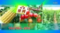 广告制作 农博会-10s